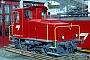 """SLM 4438 - CJ """"Tm 237 480-9"""" 01.03.1999 - TramelanTheo Stolz"""